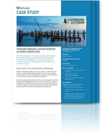 Download Louisiana Citizens Case Study